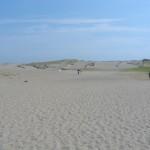 Nakatajima Sand Dunes: