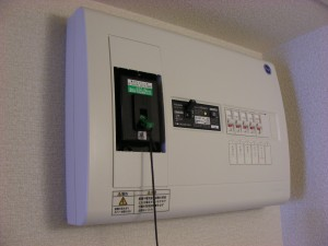 For single apartments, the standard is 100 Volts, 30 Amps.