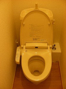All apartments are equipped with a modern, western style sit down toilet. Instructions in Japanese.