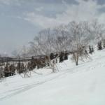 Edge of the treeline. Hakuba Ridge.