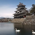 Swans in the inner moat of Matsumoto Castle. Japan Alps in the background.