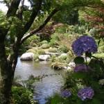 The beautiful gardens of Mimurotou-ji