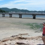 Takeshima at low tide. The water in Mikawa Bay is quite clean, you can collect & eat shellfish.